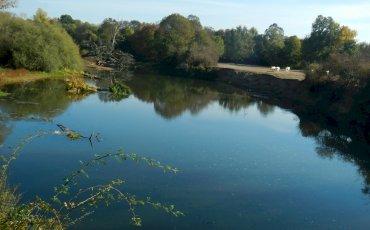 Pollution rivière Aron :