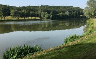 Information aux pêcheurs : étang de la tanche à Imphy -  interdiction temporaire de pêche.